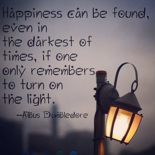 Happiness Can Be Found, Even In THe Darkest Of Times, If One Only Remembers To Turn On The Light - Albus Dumbledore Quote